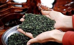 чай тигуанинь хранение