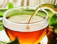 противопоказания курильского чая