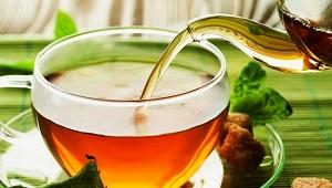 предестережение при применении курильского чая