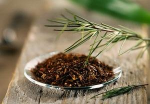 полезные свойства чая ройбуш