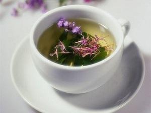 иван-чай свойства