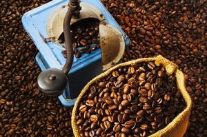 Выбор кофемолки — баланс качества и производительности