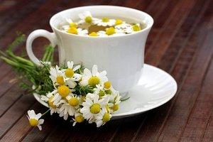 Правильный выбор травы для приготовления ромашкового чая