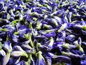 синий чай из тайланда купить в санкт-петербурге