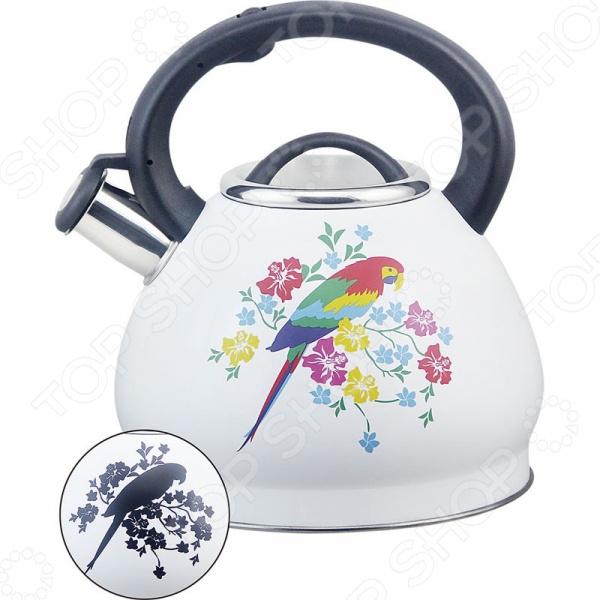 Чайник со свистком Rainstahl RS/WK 7628-30. В ассортименте