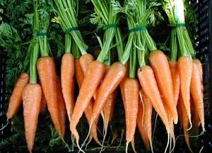 приготовление морковного чая