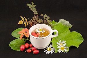 свойства травяных чаев