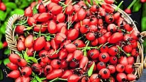 Особенный плод для особенного периода в вашей жизни