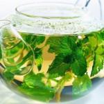 Правила заваривания и употребления чая с мелиссой