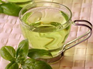 Приготовления чая и отвара из мелиссы
