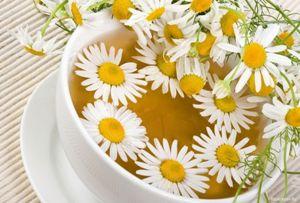 Свойства ромашкового чая